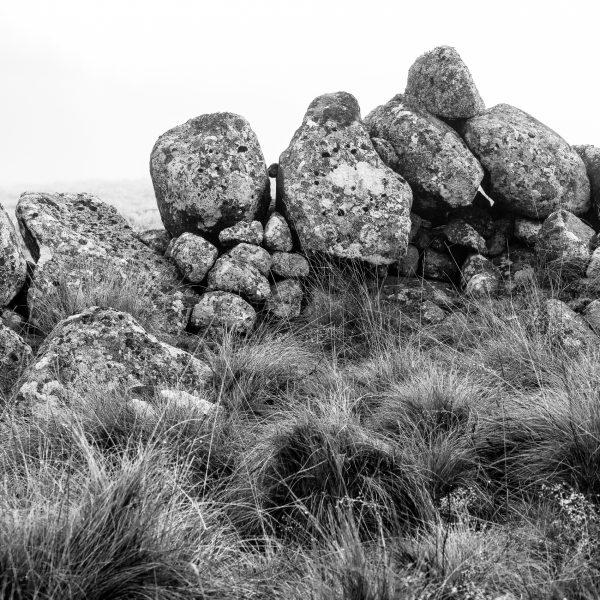 Aubrac, France, mur de pierre, Rieutort d'Aubrac