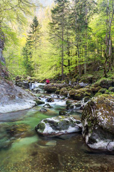 Chartreuse, Alpes, Ombrelle rouge, Gorges du Guiers Mort