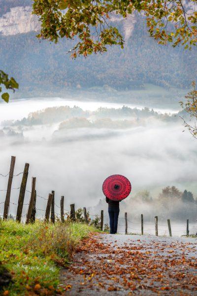 Chartreuse, Alpes, Ombrelle rouge, Vallée du Guiers dans la brume depuis Miribel les Echelles