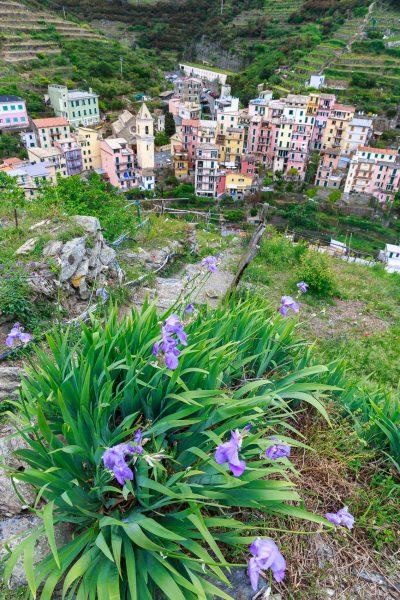 Cinque Terre, Italia, Liguria, Manarola