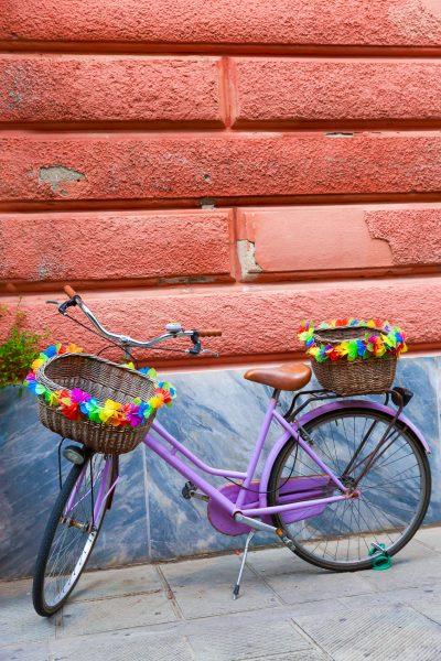 Cinque Terre, Italia, Liguria, Levanto, vélo fleuri