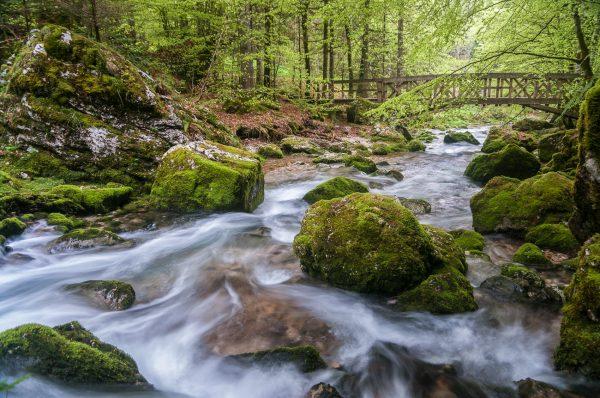 Alpes, Isère, Chartreuse, torrent du Guiers Vif, cirque de St-Même