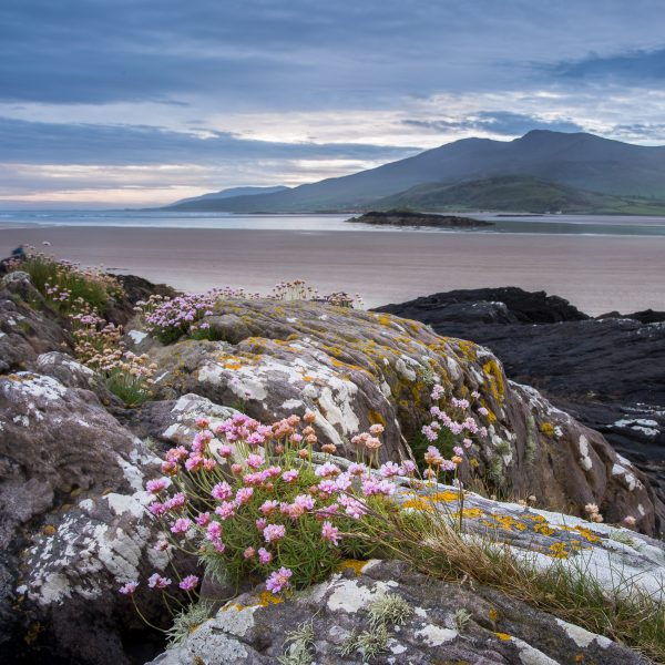 Irlande, Kerry, Dingle peninsula, Brandon Bay, voyage photo en Irlande