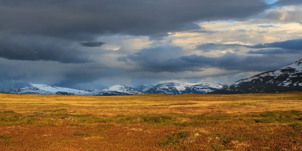 Suède, Padjelanta, Laponie, Sapmi, Sarek mountains
