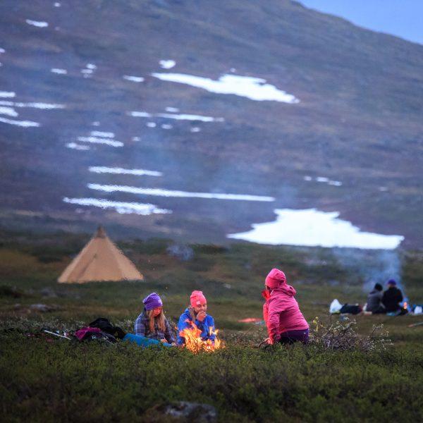 Suède, Padjelanta, Laponie, Sapmi, marquage des jeunes rennes