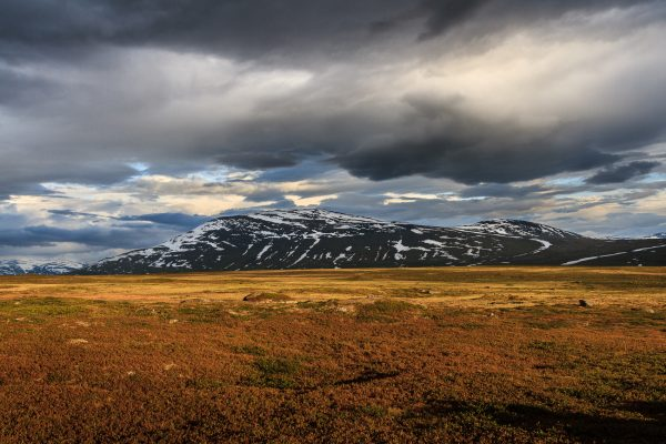 Suède, Padjelanta, Laponie, Sapmi,