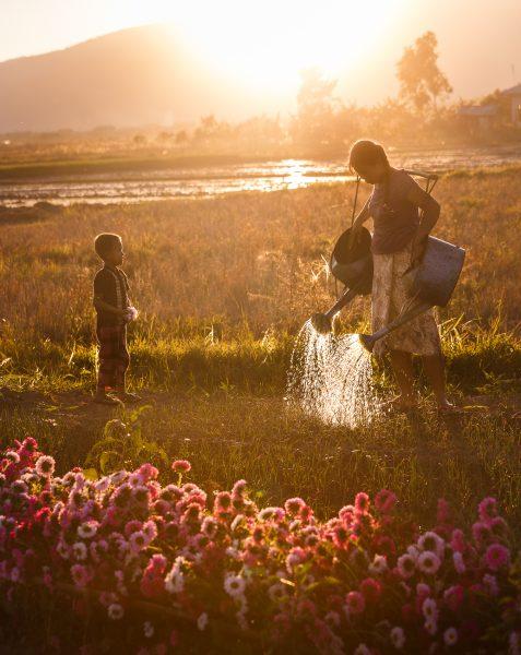 Myanmar, Birmanie, Inle, Nyaung Shwe