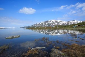 Voyage photo laponie, Suède, Padjelanta, padjelantaleden, Arasluokta, bords de Virihaure