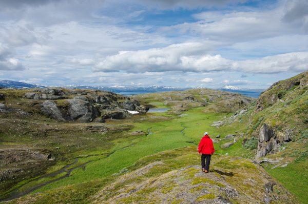 Trek photo laponie, Suède, Padjelanta, padjelantaleden, vers Staloluokta