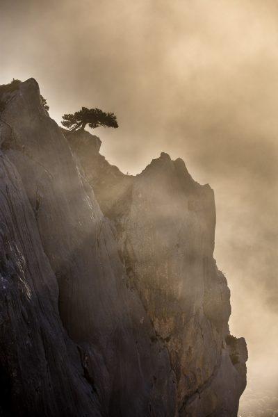stage photo bivouac sur la réserve naturelle des hauts de Chartreuse