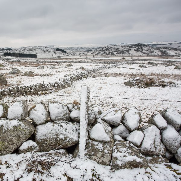 Paysage hivernal en Aubrac