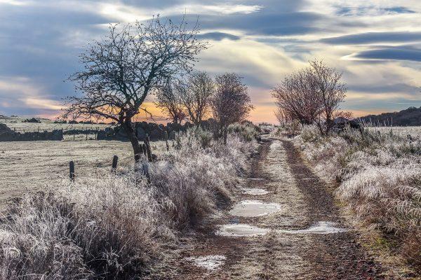 Chemin d'Aubrac en hiver