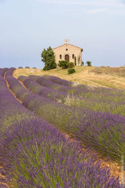 Stage photo en Provence, chapelle et champ de lavandes