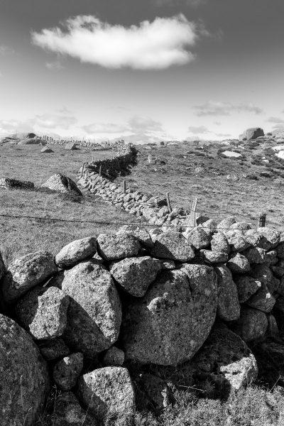 Paysage d'Aubrac en noir et blanc, avec un muret de pierres