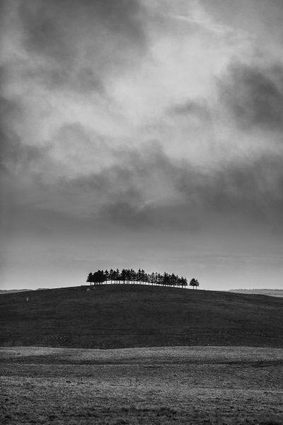 Paysage d'Aubrac en noir et blanc, stage photo noir et blanc