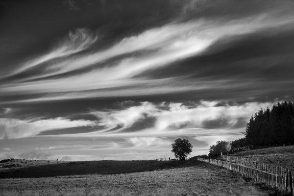 Paysage d'Aubrac en noir et blanc, stage photo en Aubrac