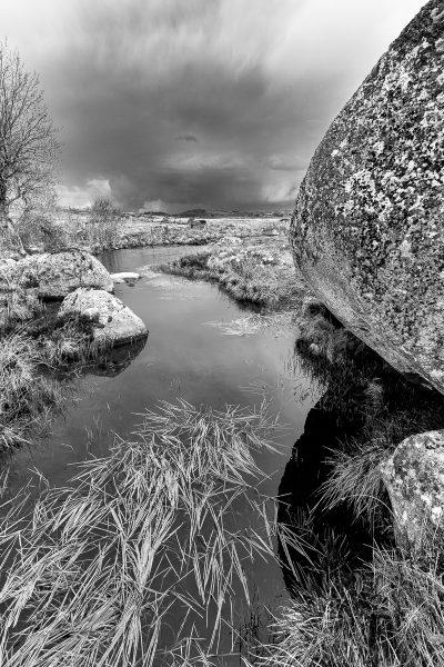 Paysage d'Aubrac en noir et blanc, avant l'orage