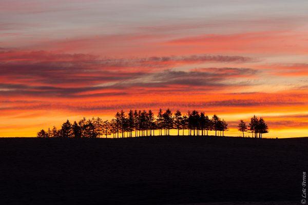lever de soleil en Aubrac