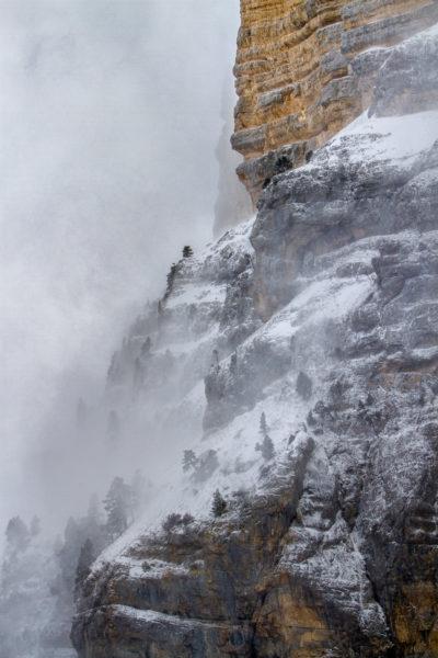 falaises du Granier sous la tempête de neige, Chartreuse, savoie