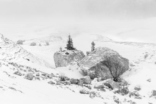 paysage d'hiver en Chartreuse, apprendre à composer