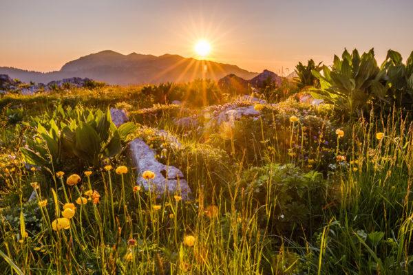 coucher de soleil au Charmand Som