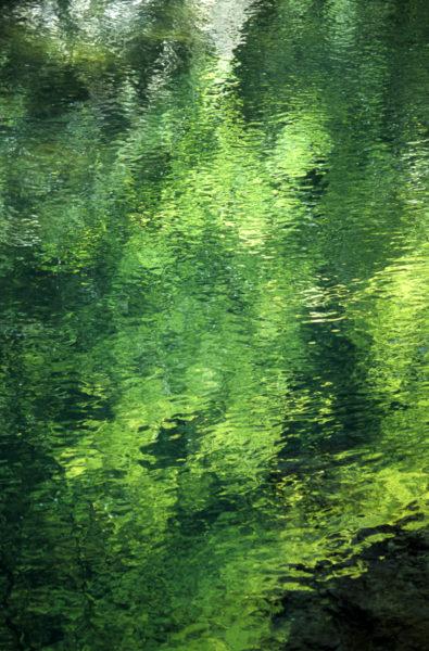 reflet sur l'eau calme d'une rivière de Chartreuse