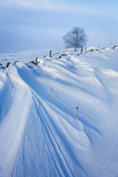 jouer avec la neige, stage photo en Aubrac