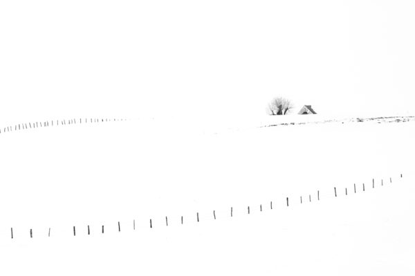 photographie minimalliste en Aubrac sur la neige